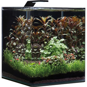 Dennerle Mini-Aquarium Nano Cube® Basic 30 l