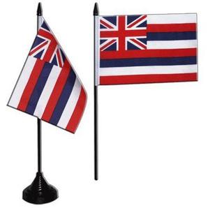 Flaggenfritze® Tischflagge USA Hawaii 10x15 cm