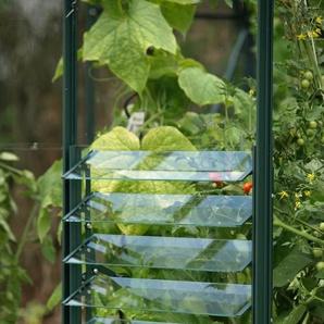 VITAVIA Lamellen-Wandfenster , grün, BxH: 61x45 cm