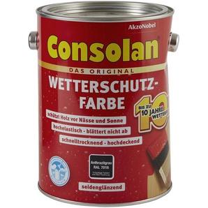 Consolan Wetterschutzfarbe anthrazit 2,5 l