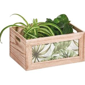 Zeller Aufbewahrungs-Kiste »Jungle«, Holz