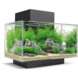 Fluval Aquarium-Set Edge 2.0 LED 23 l Schwarz
