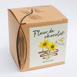 Geschenk-Anzuchtset Fleur de chocolat - Schokoladenblume