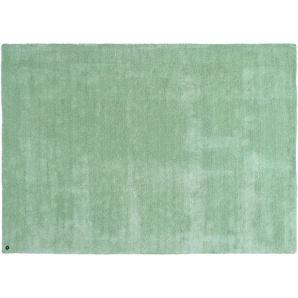 Tom Tailor Kurzflorteppich  Powder ¦ grün ¦ 100 % Polyester, Synthethische Fasern ¦ Maße (cm): B: 140 Teppiche  Wohnteppiche » Höffner