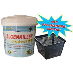Weitz Algenkiller Protect 3,75 kg - bis 250.000 Liter - mit Pflanzkorb!