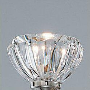 15,5 cm Lampenschirm aus Glas