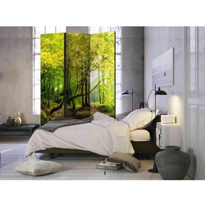 3 teiliger Paravent f�r Schlafzimmer Wald Motiv