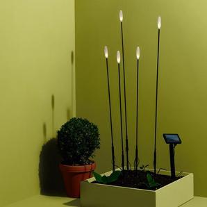 5 Solar-Leuchtstäbe - schwarz - Edelstahl -