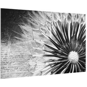 60 cm x 40 cm Glas Spritzschutzpaneel Selbstklebend