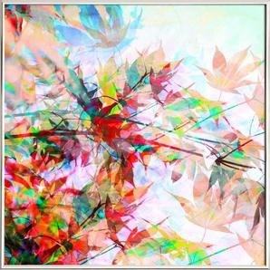 Abstract Autumn 2 - Poster im Alurahmen