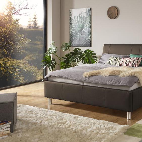 ADA trendline Polsterbett Fossey Leder SLW, 140x200 cm Höhe Bettseite: 44 cm, ohne Matratze braun Doppelbetten Betten