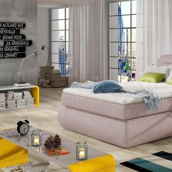 andas  Boxspring-Betten , rosa »Pula« mit Bettkasten»Pula«