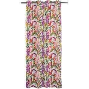 Apelt Vorhang »Exotic«, H/B 245/135 cm, rosa, blickdichter Stoff