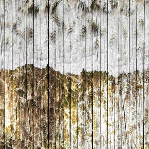 Architects Paper Fototapete Atelier 47 Beachboard 1, Holz B/L: 4 m x 2,7 m, St. bunt Fototapeten Tapeten Bauen Renovieren