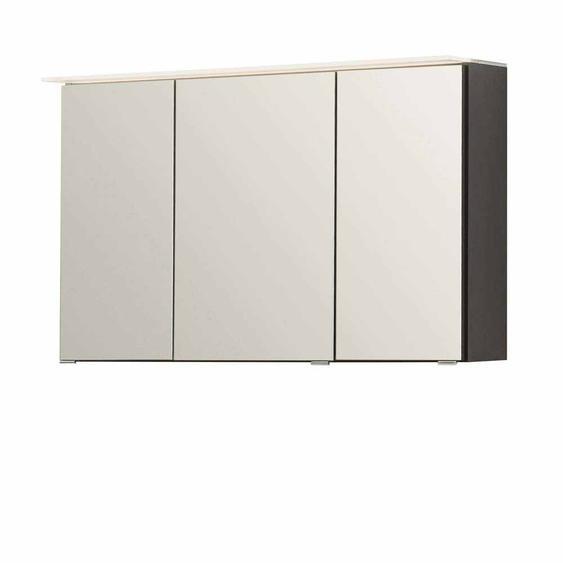 Badezimmer Spiegelschrank in Grau 3D