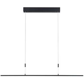 Bankamp LED-Pendelleuchte, Alu, Eisen, Stahl & Metall 98 cm