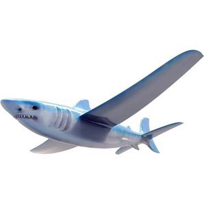 Beluga Real Flyer Hai