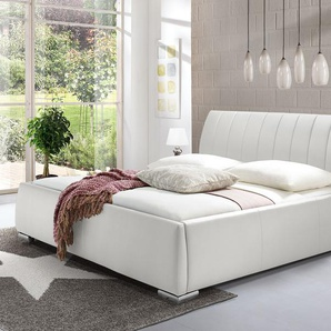 Polsterbett 180x200 cm, weiß, weitere Farben & Größen bei BETTEN.de
