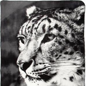 Biederlack Wohndecke »Leopard«, 130x180 cm, grau