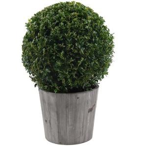 Buchsbaum-Kugel Ø 28 cm im 19 cm Holzeimer