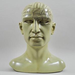 Büste Phrenologie-Kopf