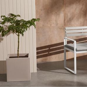 Catania Gartenbank, Weiss und Polywood
