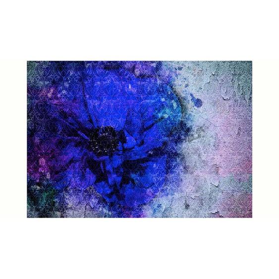 Consalnet Vliestapete »Blaue Vintage Blume«, floral