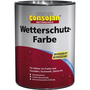 Consolan Wetterschutzfarbe 10 L grau 202 Farbe Wetterschutz Holzfarbe Deckfarbe