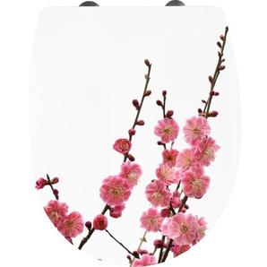 Cornat Thermoplast WC Sitz Kirschblüte mit Absenkautomatik