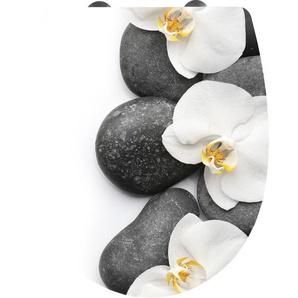 Cornat Thermoplast WC Sitz Orchidee mit Absenkauomatik