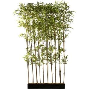 Creativ green Künstliche Zimmerpflanze Bambusraumteiler, im Holzkasten H: 200 cm grün Zimmerpflanzen Kunstpflanzen Wohnaccessoires