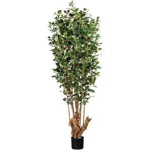 Creativ green Kunstbaum Ficus Benjamini H: 175 cm grün Künstliche Zimmerpflanzen Kunstpflanzen Wohnaccessoires