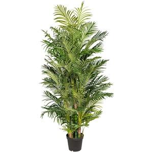 Creativ green Kunstpalme Arecapalme H: 220 cm grün Künstliche Zimmerpflanzen Kunstpflanzen Wohnaccessoires