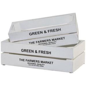 Creativ home Kiste »Green&Fresh« (Set, 2), 2er Set