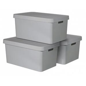 Curver 3er Set Infinity Box mit Deckel 45L, hellgrau
