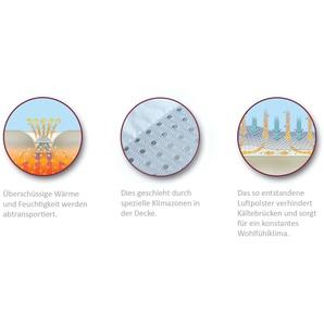 Jahreszeiten Decken Aus Daunen Preisvergleich Moebel 24