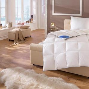 Daunenbettdecke, »Lina«, Hanse by RIBECO, Füllung: 90% Daunen & 10% Federn, Bezug: 100% Baumwolle, Hochwertiges Naturprodukt!
