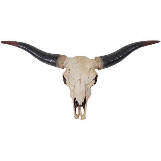 Deko Sch�del 75cm HWC-A14, Polyresin Stier Bulle Longhorn Kopf Troph�e, In-/Outdoor natur