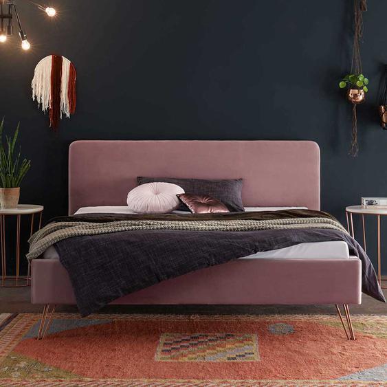 Designbett in Rosa Samt 4-Fuß Metallgestell in Kupferfarben