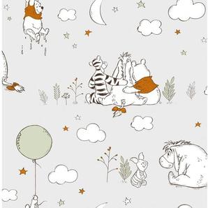 Disney  Papiertapete  Winnie Pooh auf, auf und davon Grau / Orange
