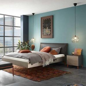 Doppelbett in Silberfarben und Anthrazit Nachtkonsolen (dreiteilig)