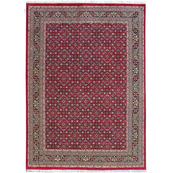 Esposa Orientteppich 40/60 cm Rot , Textil , Ornament , 40x60 cm