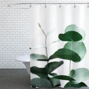 Eucalyptus 5 - Duschvorhang