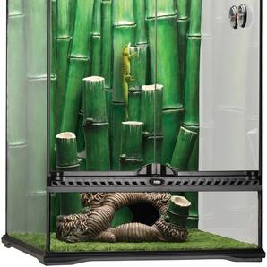 Exo Terra Terrarium Bamboo Forest Kit, BxTxH: 45x45x60 cm B/H/T: 45 x 60 schwarz Terrarien Terraristik Tierbedarf