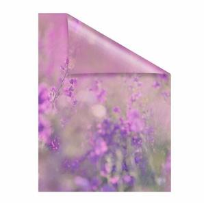 Fensterfolie »Blumenwiese«, LICHTBLICK, blickdicht, strukturiert