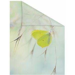 Fensterfolie »Schmetterling Grün«, LICHTBLICK, blickdicht, strukturiert, selbstklebend, Sichtschutz