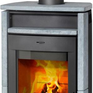 Fireplace Kaminofen Paris A+ (A++ bis G) Einheitsgröße grau Kaminöfen Heizen Klima