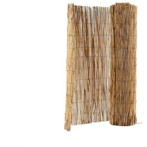 FLORABEST Sichtschutz Schilf, 100 x 600 cm