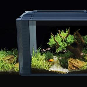 FLUVAL Aquarium Spec XV 60, BxTxH: 56x29x45 cm B/H/T: 56 x 45 29 cm, 60 l schwarz Aquarien Aquaristik Tierbedarf