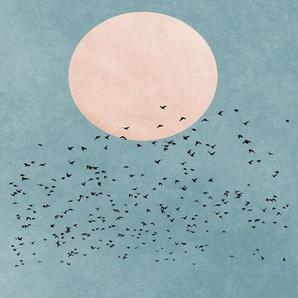Fly Away - Leinwandbild